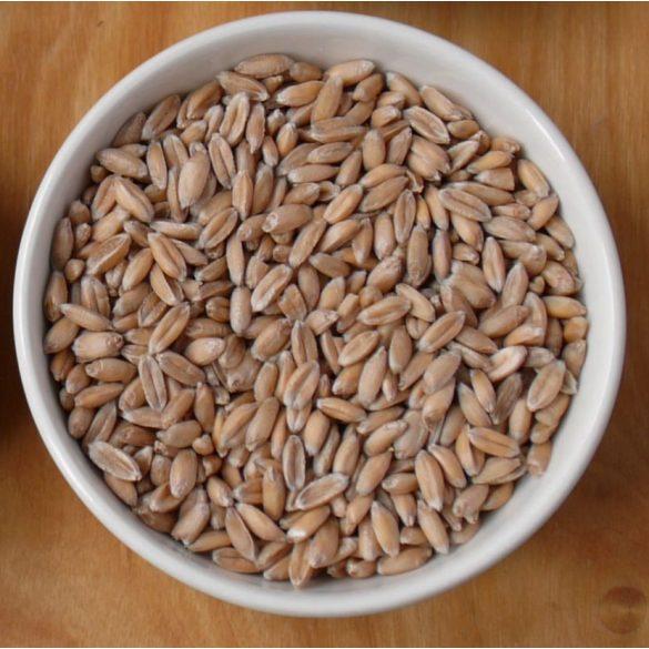 bio tönköly (5kg)