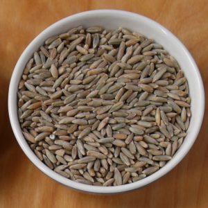 Bio-Roggen - 1/2 kg