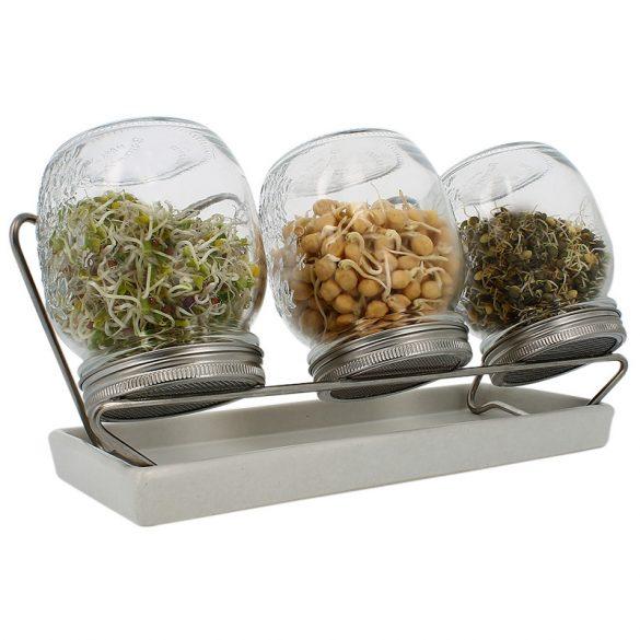 Eschenfelder Sprossenglas-System mit 3 Gläsern und weißer Schale