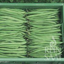 bio bokorbab vetőmag, zöld hüvelyű, Marona