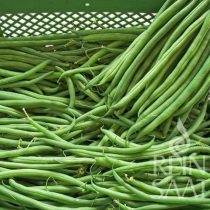 Zöld hüvelyű bokorbab biovetőmag, Caruso