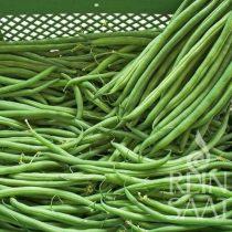 Grüne Buschbohne, Caruso - Biosaatgut